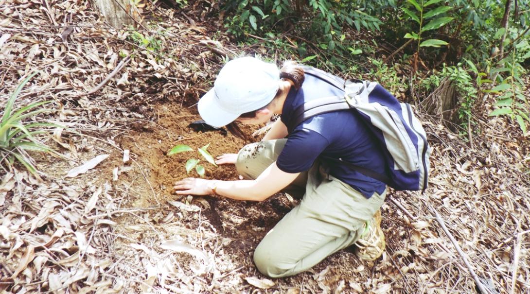 マダガスカルで熱帯雨林保護 R.H.